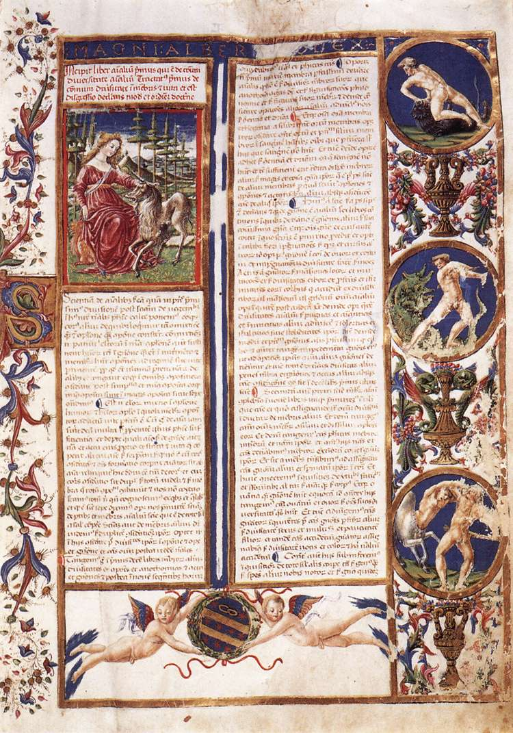 First page of the Codex De Animalibus