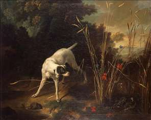 Dog Pointing a Partridge
