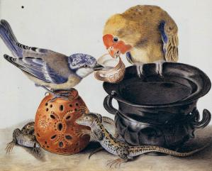 Parrot, Blue Tit, Two Lizards, and Vases