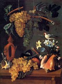 Still-Life with Grapes, Flowers and Shells