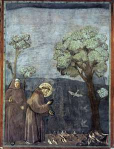 Legend of St Francis: 15. Sermon to the Birds