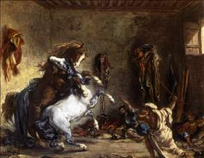 Arab Horses Fighting in a Stable