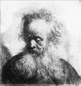 Old Man with Flowing Beard, Looking down Left