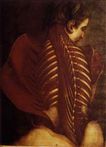 Back of Female