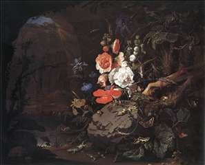 The Nature as a Symbol of Vanitas